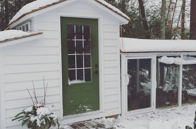 TillysNest-winter-coop-adjustable-plastic1