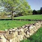 mending-wall