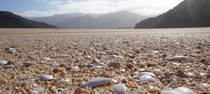 Abel Tasman und Golden Bay