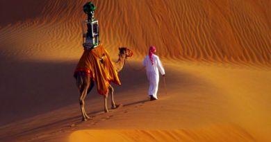 gmap camel 06