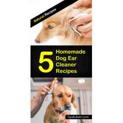 Salient All Ingredients Homemade Dog Ear Cleaner Recipes Diy Dog Ear Cleaner Homemade Dog Ear Cleaner Witch Hazel Homemade Dog Ear Cleaner Recipes Made Out bark post Homemade Dog Ear Cleaner