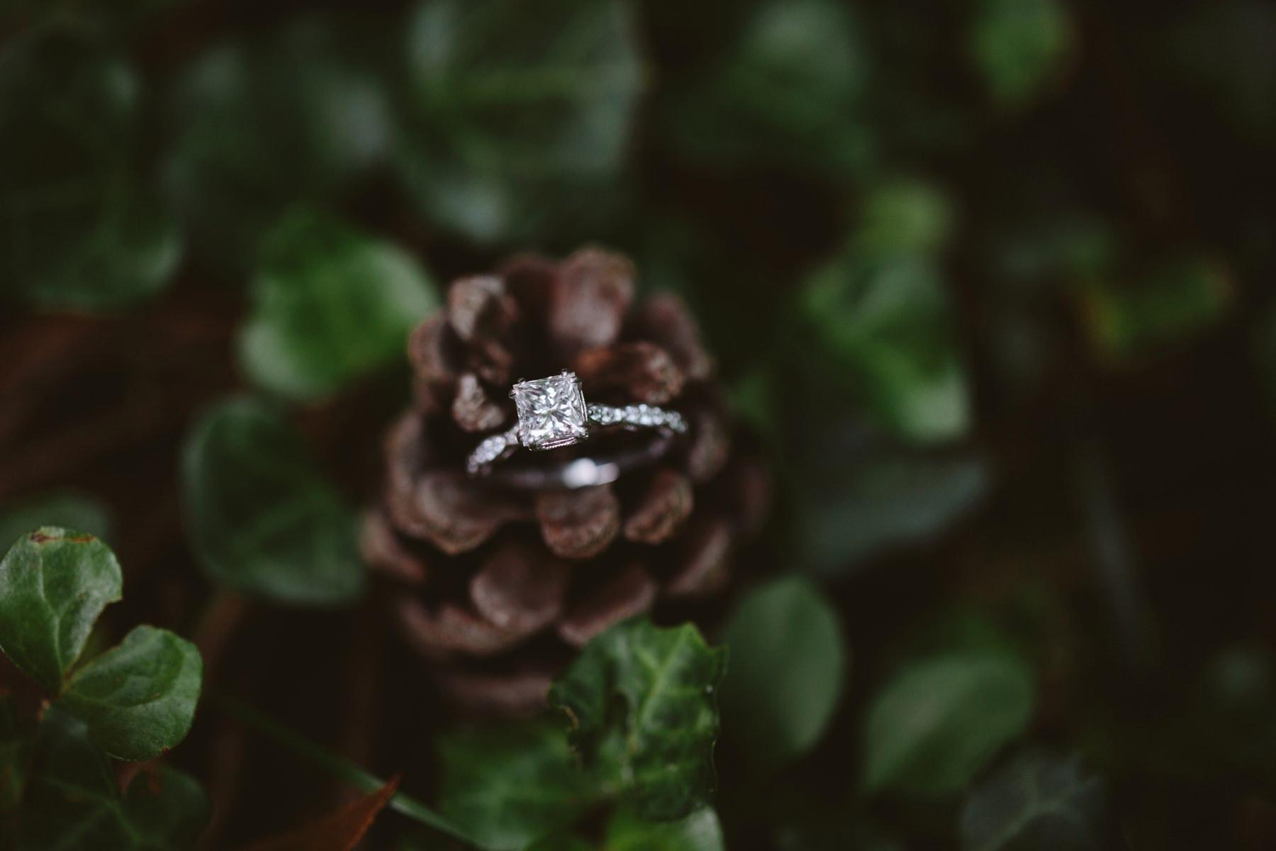 Tire Swing Photography | Timeless Charm Wedding | Camden, Ohio 4