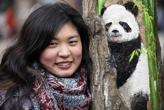 wang panda