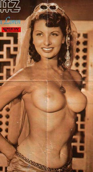 barbara eden breasts