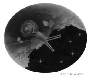 Snail With Stars