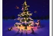 El verdadero sentido de la Navidad…