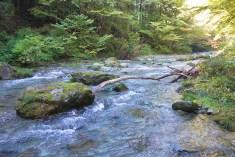 檜原村 秋川
