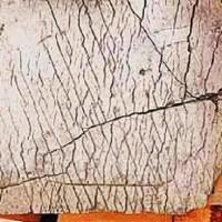The Mystery Of The Dashka Stone