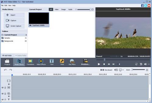 Medium Of Avs Video Editor Review