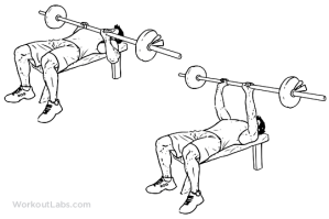 http://workoutlabs.com/wp-content/uploads/watermarked/Close-Grip_Barbell_Bench_Press.png