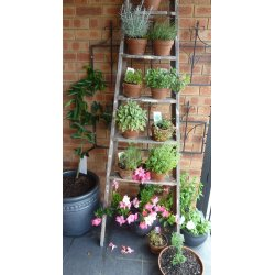 Small Crop Of Diy Backyard Decor Ideas