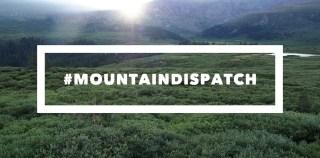 mountain dispatch bierstadt