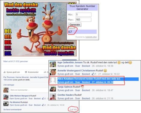 Vinder af Rensdyr venner hækleopskrift på Facebook