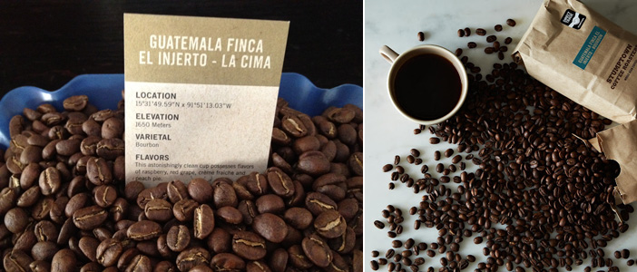 Image result for Finca El Injerto Coffee ($500 per Pound)