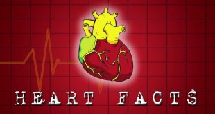 Top 10 Most Interesting Facts About Human Heart