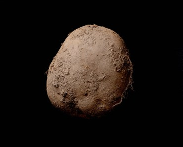 1-million-potato-photograph