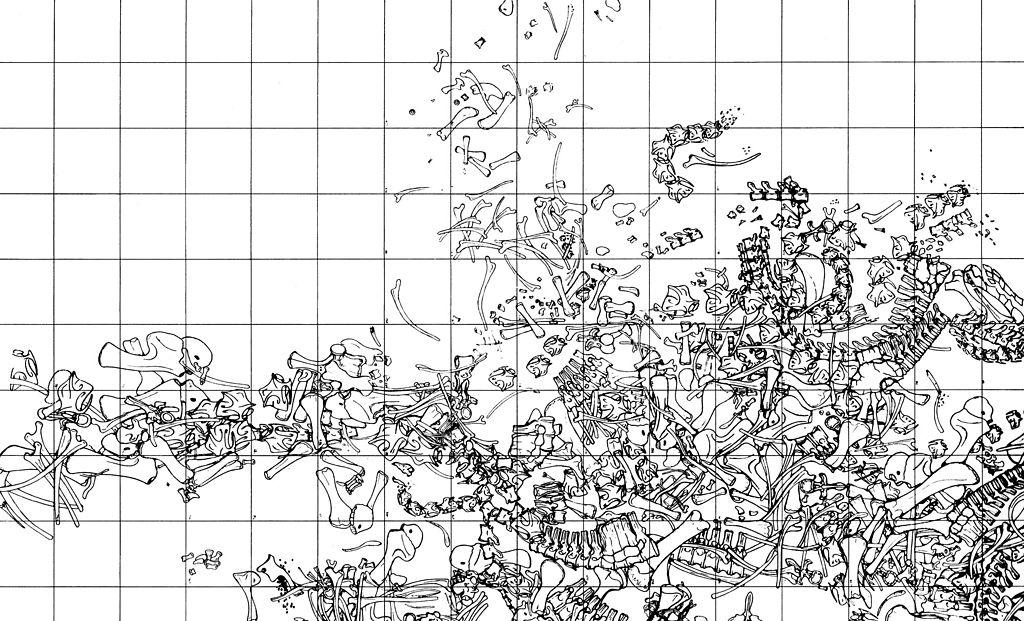 Barnum Brown map of dinosaur bones at the Howe Quarry.
