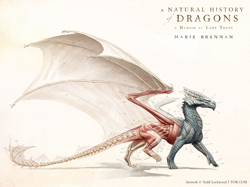 A Natural History of Dragons by Marie Brennan