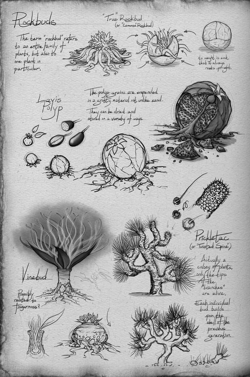 A Field Guide To Roshar Flora The Way of Kings Brandon Sanderson