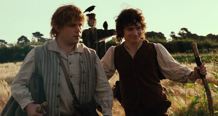 Lord of the Rings, Fellowship of the Ring, Frodo and Sam