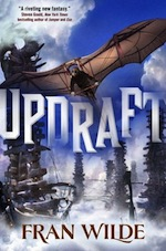 TONS of Writing Advice from Fran Wilde's Uplifting Updraft AMA!