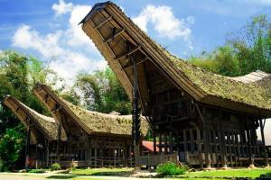 Tana Toraja Tour