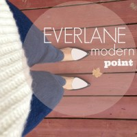 Everlane Modern Point Review