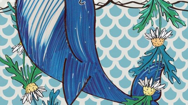 Balena Margherita | illustrazione di Tostoini