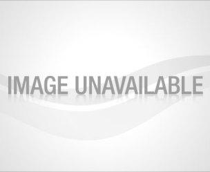 toluna-banner
