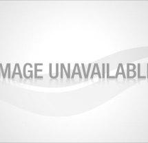 axe-deodorant
