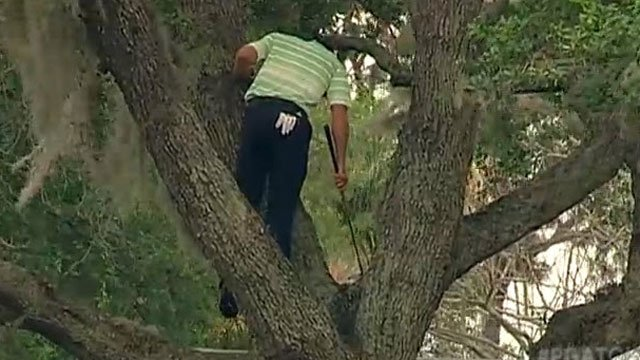 sergio-garcia-hits-shot-out-of-tree