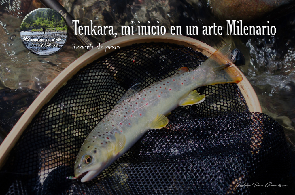 Toto_Tenkara_Portada