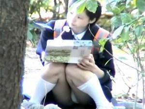 【パンチラ隠撮動画】幼い顔した女子校生が公園で座りながら昼食中…白の綿パンツが丸出しの座りチラww