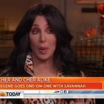 Cher Talks About the 'Amazing' DOMA Ruling: VIDEO