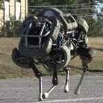 Meet Wildcat, The Military's Wireless Running Robot: VIDEO
