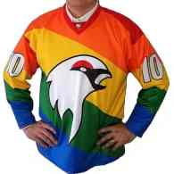 Swedish Ice Hockey Team Supports LGBTI Rights With Rainbow Uniforms