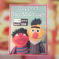 Legal Case Against Irish Bakery That Refused to Bake 'Bert and Ernie' Cake Supporting Gay Marriage Begins: VIDEO