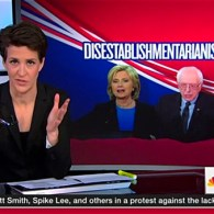 Establishment Maddow