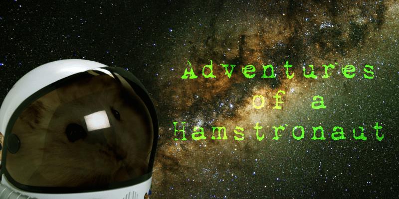 Hamstronaut