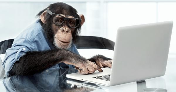 Mad Monkey Maintenance