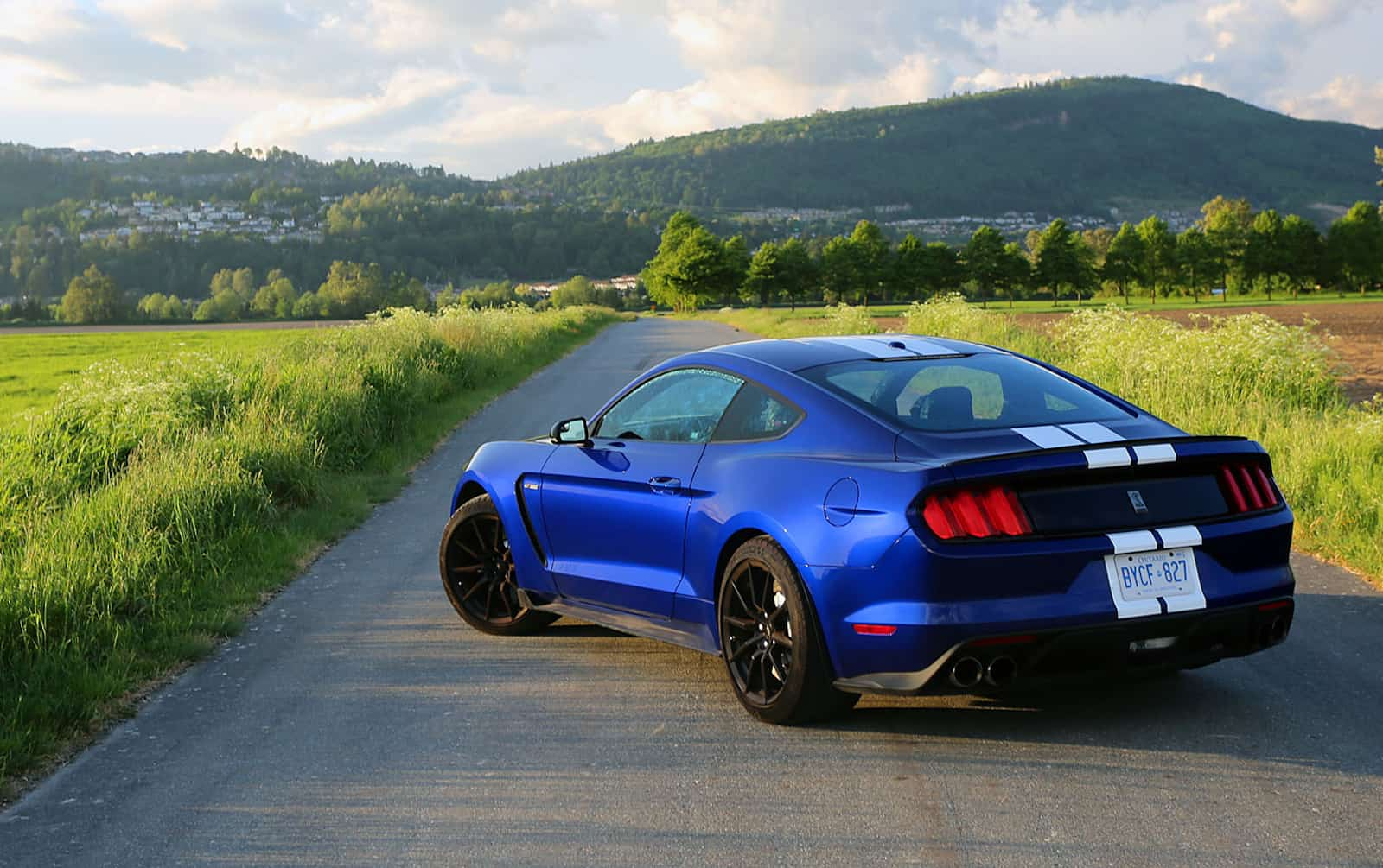 2016 Ford Shelby Gt350 Review Modern Muscle Car Perfection