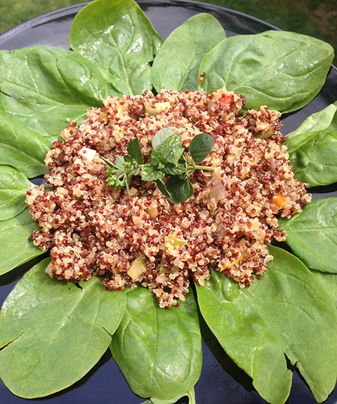 Summer Vegetable Organic Red & White Quinoa With Salad