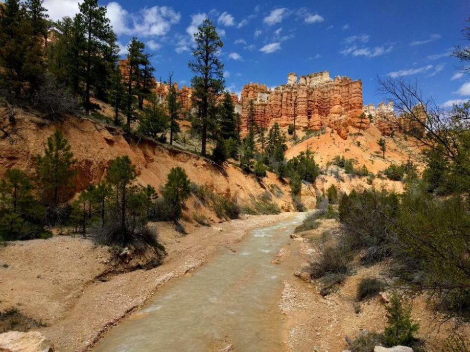Hoodoos, water, pines, and blue sky. Perfect Combo