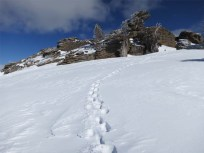 Summit of Donner Peak