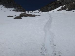 Glissade Tracks