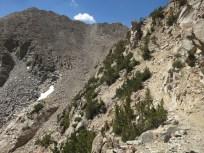 Crazy Trail