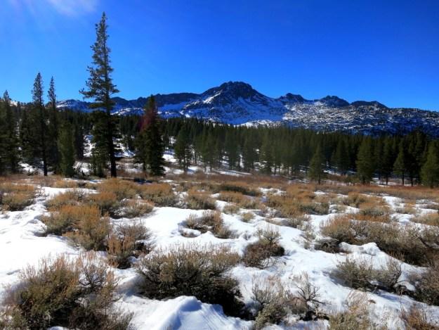 Carson Pass area peaks