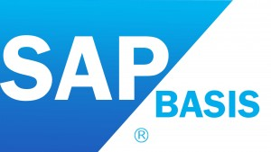 SAP Basis Training in Chennai, SAP BASIS Training Institute in Chennai