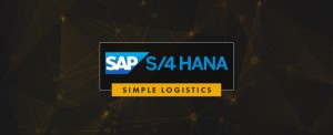 SAP Simple Logistics Training in Chennai