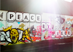 Northern Ireland – attitudes to peace walls